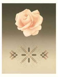 Rose Matrix VI by David Haiden