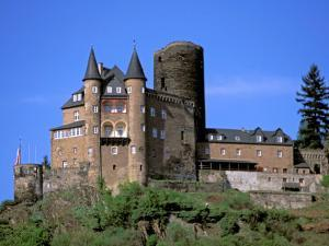 Castle, Rhine River, Germany by David Herbig