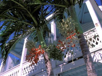 Colonial Architecture and Palm Details, Key West, Florida, USA