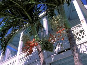 Colonial Architecture and Palm Details, Key West, Florida, USA by David Herbig