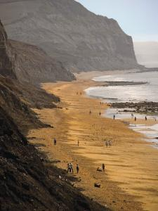 Charmouth, Jurassic Coast, UNESCO World Heritage Site, Dorset, England, United Kingdom, Europe by David Hughes