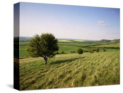 Ivinghoe Beacon from the Ridgeway Path, Chiltern Hills, Buckinghamshire, England