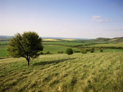 Ivinghoe Beacon from the Ridgeway Path, Chiltern Hills, Buckinghamshire, England by David Hughes