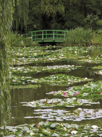 Japanese Bridge and Lily Pond in the Garden of the Impressionist Painter Claude Monet, Eure, France by David Hughes