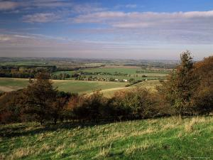 View from the Pegston Hills, of Hertfordshire and Bedfordshire, UK by David Hughes