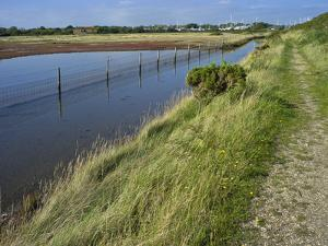 View of Salt Marshes from the Solent Way Footpath, New Forest National Park, Lymington, Hampshire,  by David Hughes
