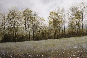 Early Spring by David Knowlton