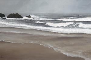 Ocean Beach by David Knowlton