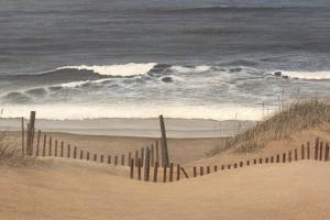 Outer Banks Beach by David Knowlton