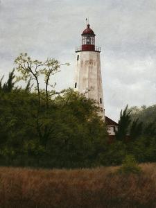 Sandy Hook Lighthouse by David Knowlton