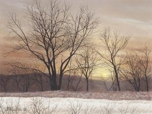 Silent Sunset by David Knowlton