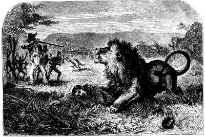 David Livingstone, Saved from a Lion by Mebalwe, a Native Schoolmaster, 1857--Giclee Print