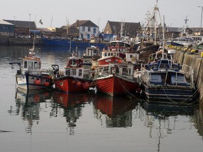 Fishing Boats, Howth Harbour, County Dublin, Republic Ireland, Europe