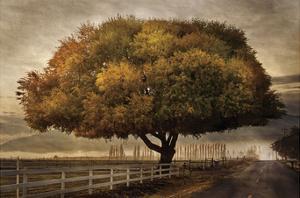 Autumnal Landscape by David Lorenz Winston