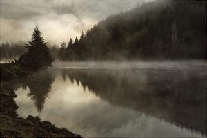 Coos Fog by David Lorenz Winston