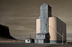 Grain Elevator by David Lorenz Winston