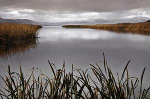 Lake Calm by David Lorenz Winston
