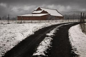 Late Winter Morning by David Lorenz Winston