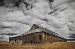 Siskiyou County Barn by David Lorenz Winston