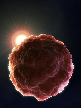 Stem Cell Research, Conceptual Artwork