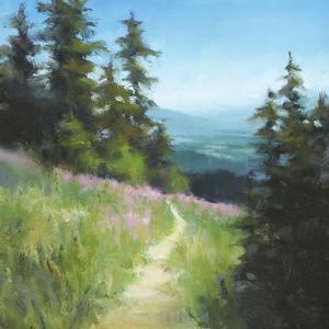 Alpine Hike by David Marty
