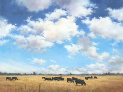 Big Sky Country by David Marty