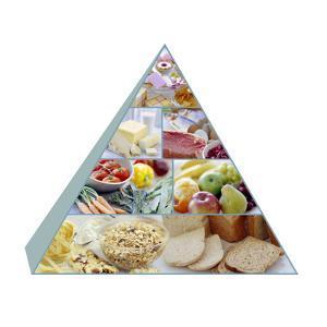 Food Pyramid by David Munns