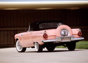 1956 Ford Thunderbird by David Newhardt