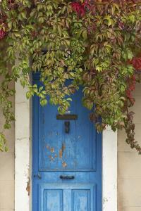 Blue Doorway with Grape Vines (Vitis) Puyloubier, Var, Provence, France, October 2012 by David Noton