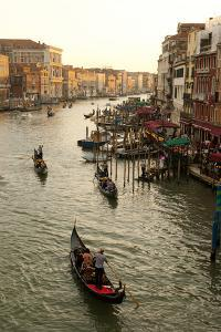 Bustling Riverfront Along the Grand Canal in Venice, Italy by David Noyes