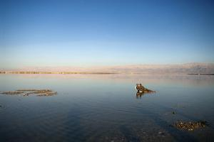 Couple in Healing Mud, Dead Sea, Israel by David Noyes