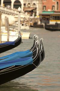 Gondolas Along the Grand Canal of Venice, Italy by David Noyes