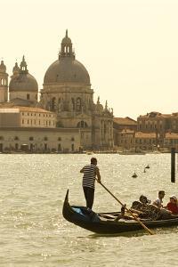 Gondolier on the Grand Canal, Santa Maria Della Salute, Venice, Italy by David Noyes