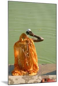 Hindu Woman in a Ritual Cleansing Bath at Pushkar Lake, Rajasthan, Pushkar, India by David Noyes