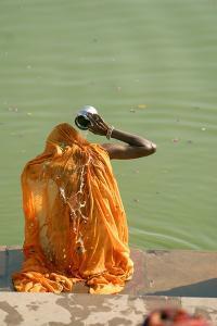 Hindu Woman in a Ritual Cleansing Bath at Pushkar Lake, Rajasthan, Pushkar, India by David Noyes