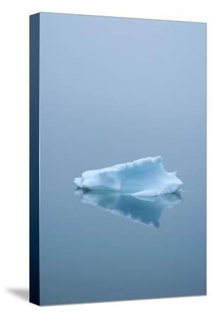 Iceberg Floats on Erik's Fjord in Southern Greenland