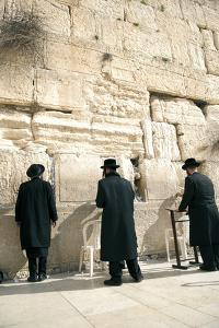 Jewish Orthodox Men Pray at Western Wall, Jerusalem, Israel by David Noyes