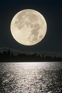 Full Moon by David Nunuk
