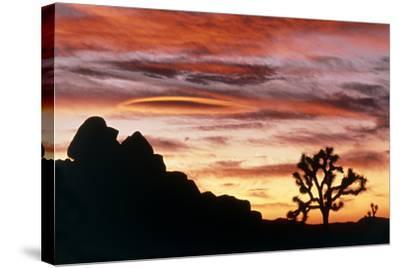 Lenticular Cloud, Joshua Tree NM, Sunset