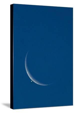 Lunar Occultation of Venus