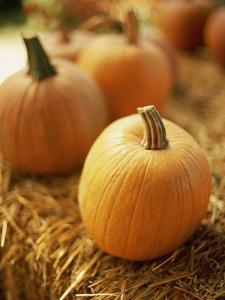 Pumpkins on Bale of Hay by David Papazian