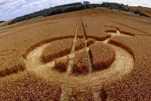 Crop Formation, Cheesefoot, Hampshire by David Parker