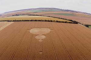 Crop Formation In Form of Mandelbrot Set by David Parker