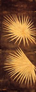 Fan Palm Triptych I by David Parks