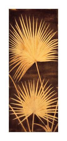 Fan Palm Triptych II