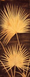 Fan Palm Triptych II by David Parks
