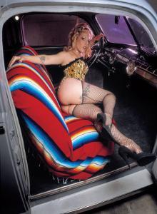 Pin-Up Girl: Front Seat Fish Nets by David Perry