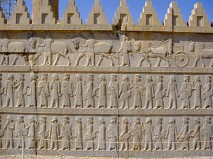 Apadama Staircase, Persepolis, Iran, Middle East by David Poole