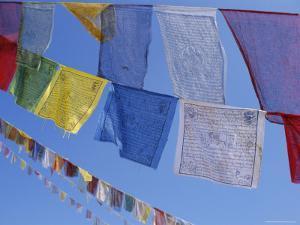Buddhist Prayer Flags, Bodhnath, Kathmandu, Nepal, Asia by David Poole