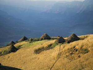Debirichwa Village in Early Morning, Simien Mountains National Park, Ethiopia by David Poole